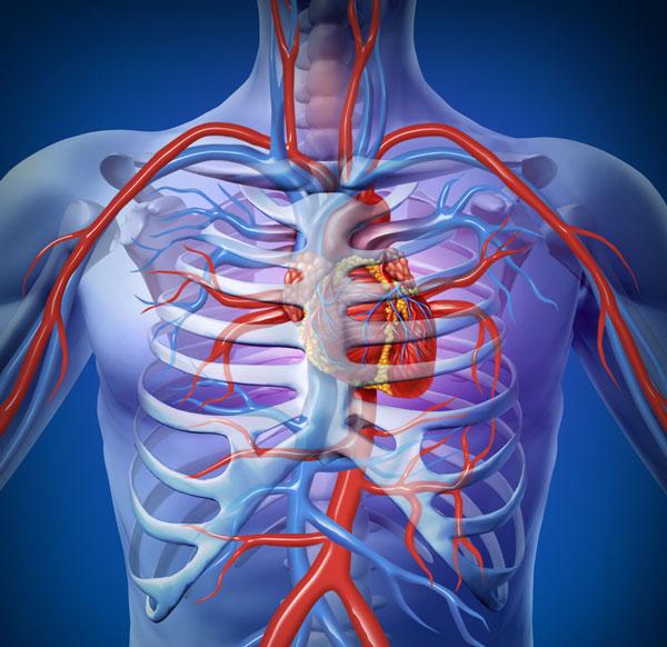 South Valley Internal Medicine